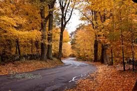 finding peak fall foliage england england fall foliage