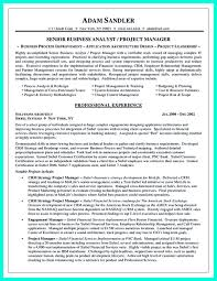 Example Of Business Analyst Resumes Data Analyst Resume Will Describe Your Professional Profile