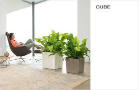 lechuza self watering planters usa