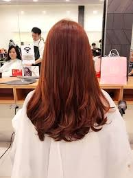 popular hair colour for korean best hair colours for your chinese zodiac sign in 2017