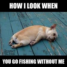 Funny Fish Memes - 22 outrageously funny fishing memes that only anglers can relate to