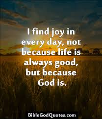 Quotes About Landscape by I Find Joy In Every Day Not Because Life Is Always Good But
