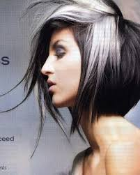 gray hair streaked bith black 17 best hair colors and styles images on pinterest colourful