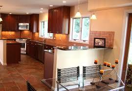 Best Kitchen Cabinet by Kitchen Cabinets Remodel Excellent Kitchen Inspiration Best
