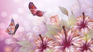 flowers flowers summer pink butterflies lilace lilies lilac