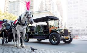 ferrari horse vs mustang horse can an ev really replace central park u0027s horse drawn carriages
