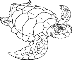 Coloriage Animaux 115