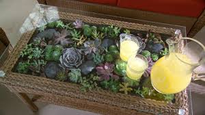 Interior Design With Flowers Furniture Beautiful Terrarium Coffee Table With Floral