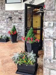 interior landscape design custom plant designs fayetteville ar