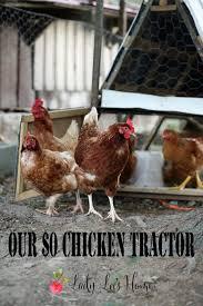 Can I Raise Chickens In My Backyard 619 Best Chickens U0026 Turkeys Hbn Images On Pinterest Backyard