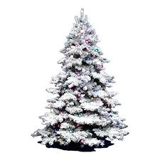 white christmas tree sale flocked christmas tree buy lit x lit artificial tree flocked white