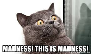 Scared Cat Meme - madness this is madness scared cat face meme generator
