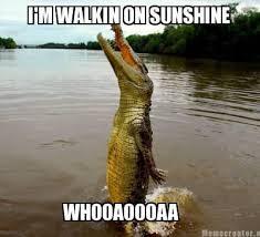 Crocodile Meme - walking on sunshine meme slapcaption com on we heart it