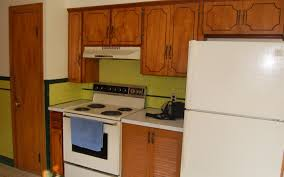 Kitchen Cabinets In Queens Ny Cabinet Cheap Kitchen Cabinets For Sale Endearing Cheap Kitchen