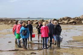 cours de cuisine cotes d armor côtes d armor atelier manifestation culturelle sorties algues et