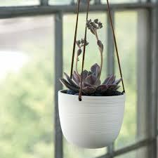 Hanging Indoor Planter by Indoor Hanging Planter Solar Design