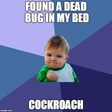 Bed Bug Meme - i used to work in a bed bug lab imgflip