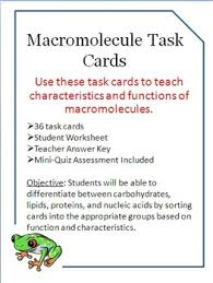 macromolecules task cards carbohydrates lipids nucleic acids