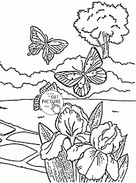 butterflies and flowers spring coloring page for kids seasons