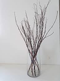 Amazon Wedding decorations birch tree branches wedding