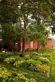 Sloping Backyard Landscaping Ideas by Best Sloped Backyard Landscaping Ideas Only Photo Amazing Garden