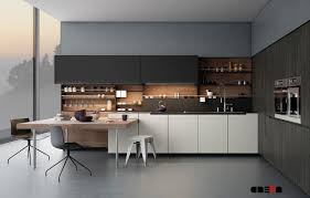 Modern Kitchen Design Prioritizes Efficiency Home Design Modern Kitchen Cabinet Literarywondrous Photo Design