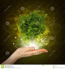 hold magical green tree and rays of light stock illustration