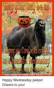 Happy Wednesday Meme - post made grar tour coffee fe happy wednesday peeps cheers to you
