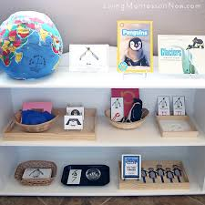 themed shelves how to prepare themed montessori shelves living montessori now