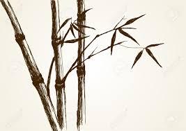 sketch illustration of bamboo tree royalty free cliparts vectors