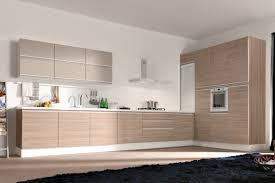 cabinet kitchen modern livingurbanscape org