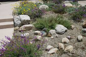 california native plant garden design water conservation