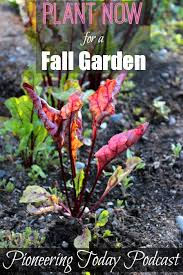 podcast 34 planting a fall vegetable garden melissa k norris