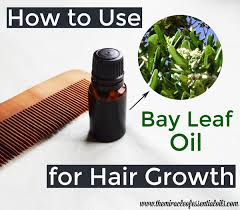 essential oils for hair growth and thickness bay essential oil for hair growth the miracle of essential oils