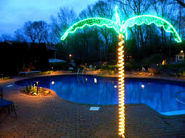 Tiki Solar Lights by Furniture Pleasing Images About Landscaping Around The Swimming
