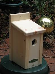 Finch Bird House Plans Momchuri