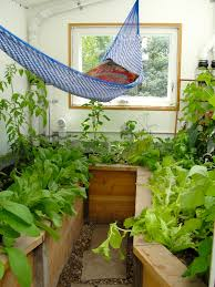 backyard greenhouse with hammock ceres greenhouse