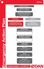 dan emergency action plan template u2013 try diving