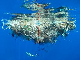 do the oceans have more plastic than fish because of pollution