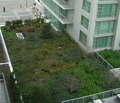 how big is 400 square meters 100 500 square meter data about real estate market in japan