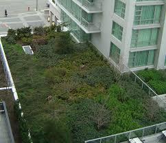 green roofs u2013 eixverd
