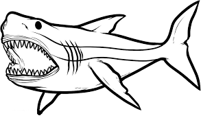 Beautiful Coloring Pages Of Sharks Artsybarksy Coloring Pages Sharks Printable