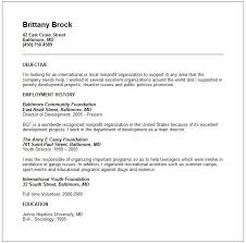 how to write a resume with no work experience example