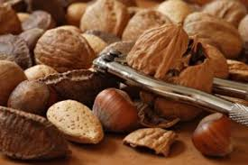 a thanksgiving of patentable nuts and vintage nutcrackers earth