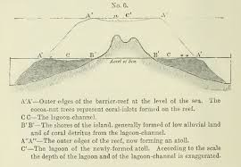 darwin the geologist scientific american blog network