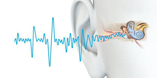 The Blind Spot Of The Eye Interview Making The First Therapies For Hearing Loss Tinnitus