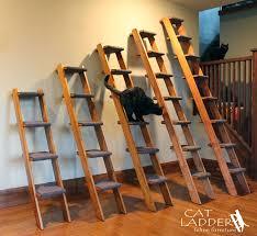 cat ladder feline furniture selection guide cat ladder feline