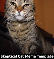 Kitty Meme Generator - great cats be funny blog april 2015