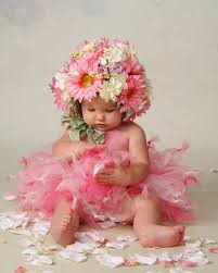 baby flowers 105 best flowers in hair images on flowers