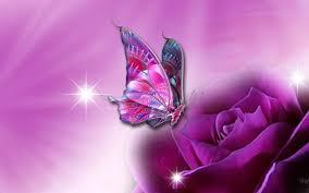 glitter wallpaper with butterflies 3d butterfly wallpaper for desktop unique nature hd wallpapers